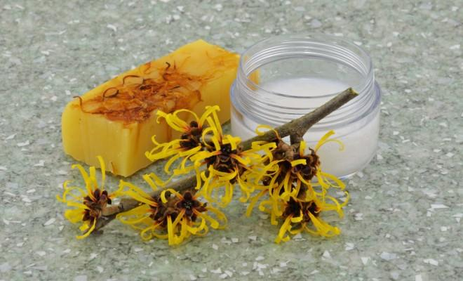 Witch hazel in various forms